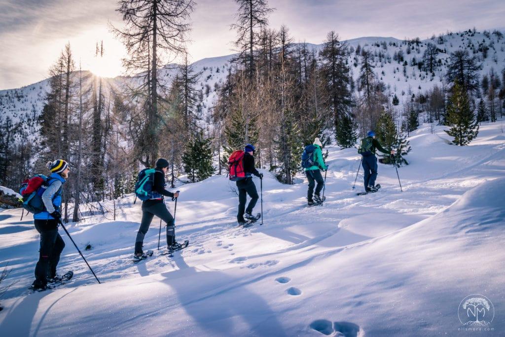 On snowshoes in Switzerland: Alp Sadra