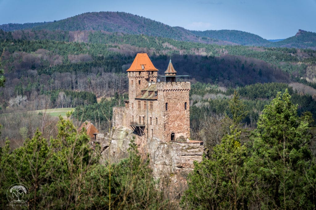 Exploring the Palatinate Forest: Burg Berwartstein