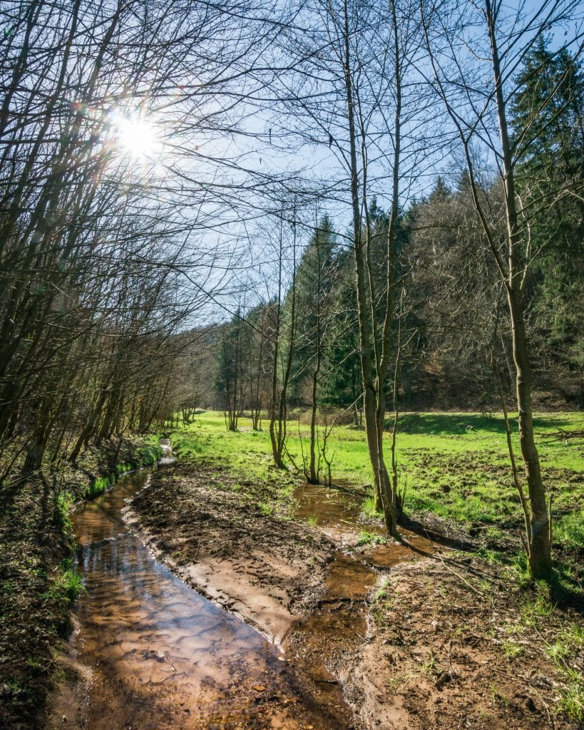 Langenbach Valley