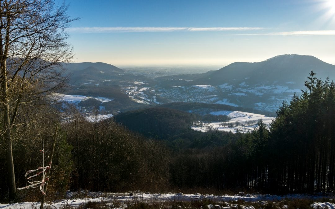 Palatinate Forest: Winter photo-hike to Adelberg Mountain